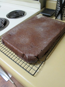 A delicious sheet cake. Who would have known while the peaceful cake was cooling that disaster would soon come?