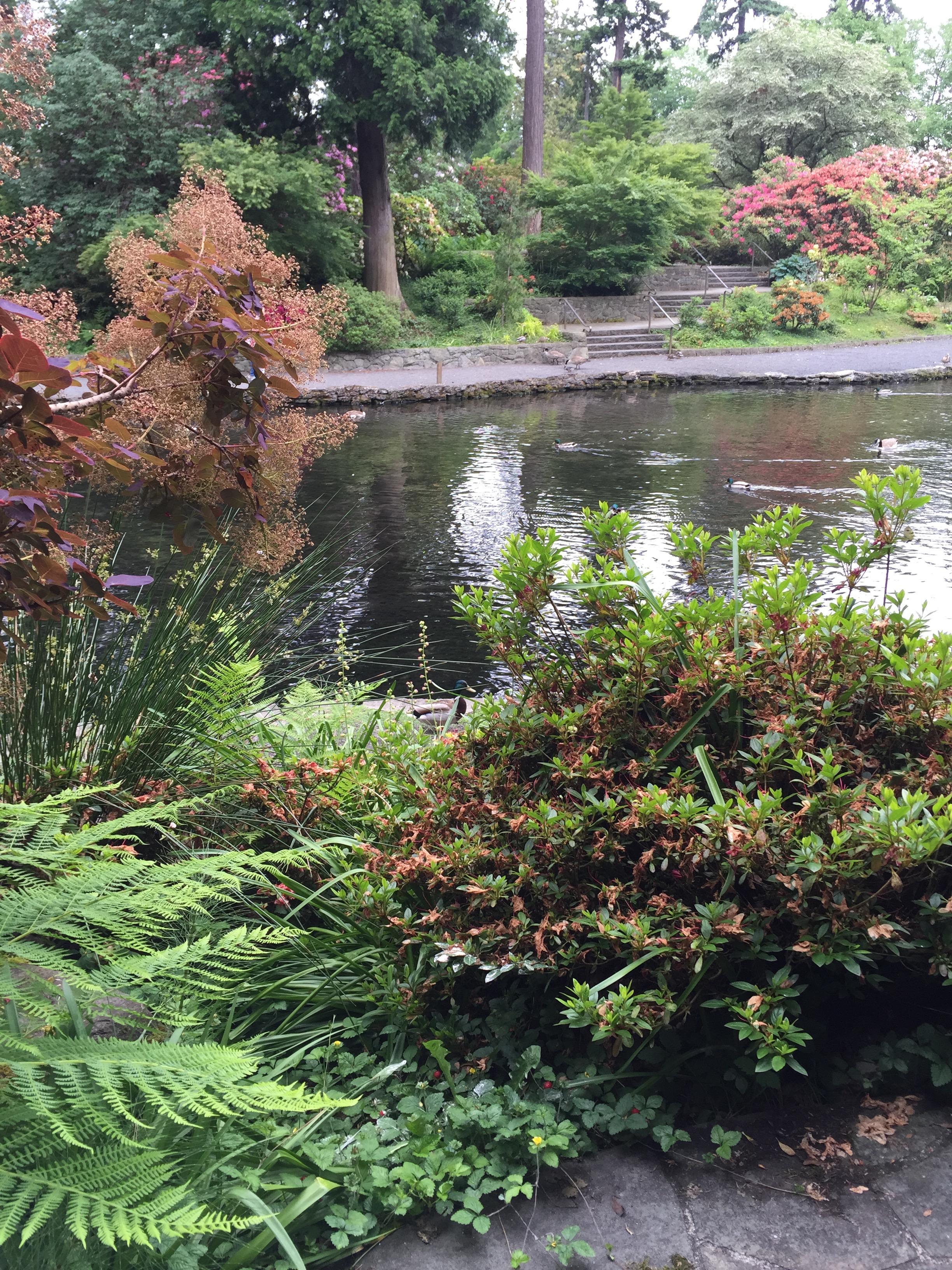 Portlands Crystal Rhododendron Garden Ink Reel