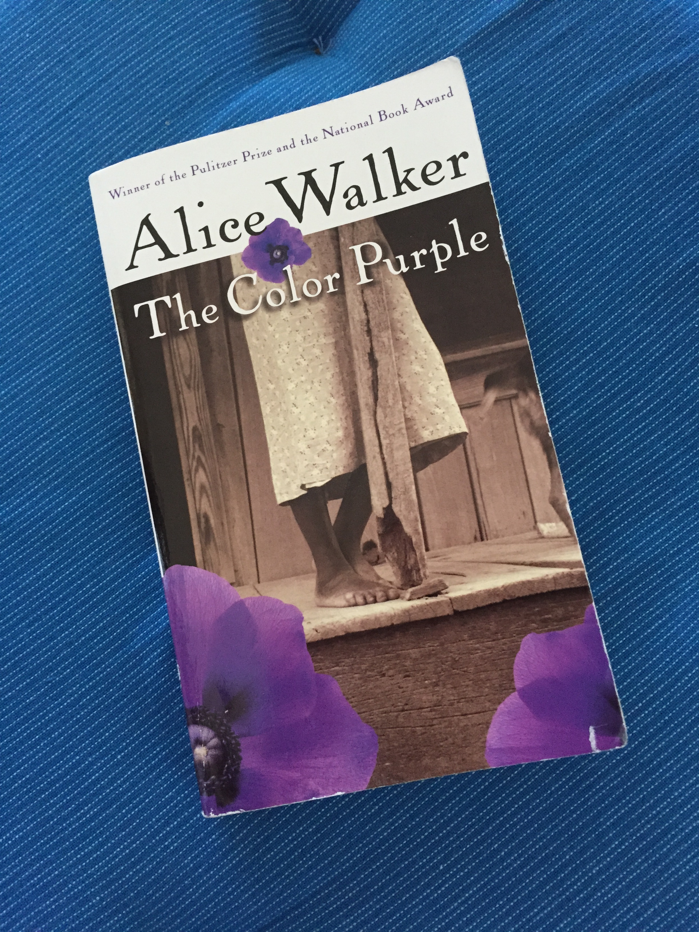 the color purple writer A life in writing: twenty-five years ago, alice walker's pulitzer prizewinning the color purple transformed african-american literature it also changed her life.