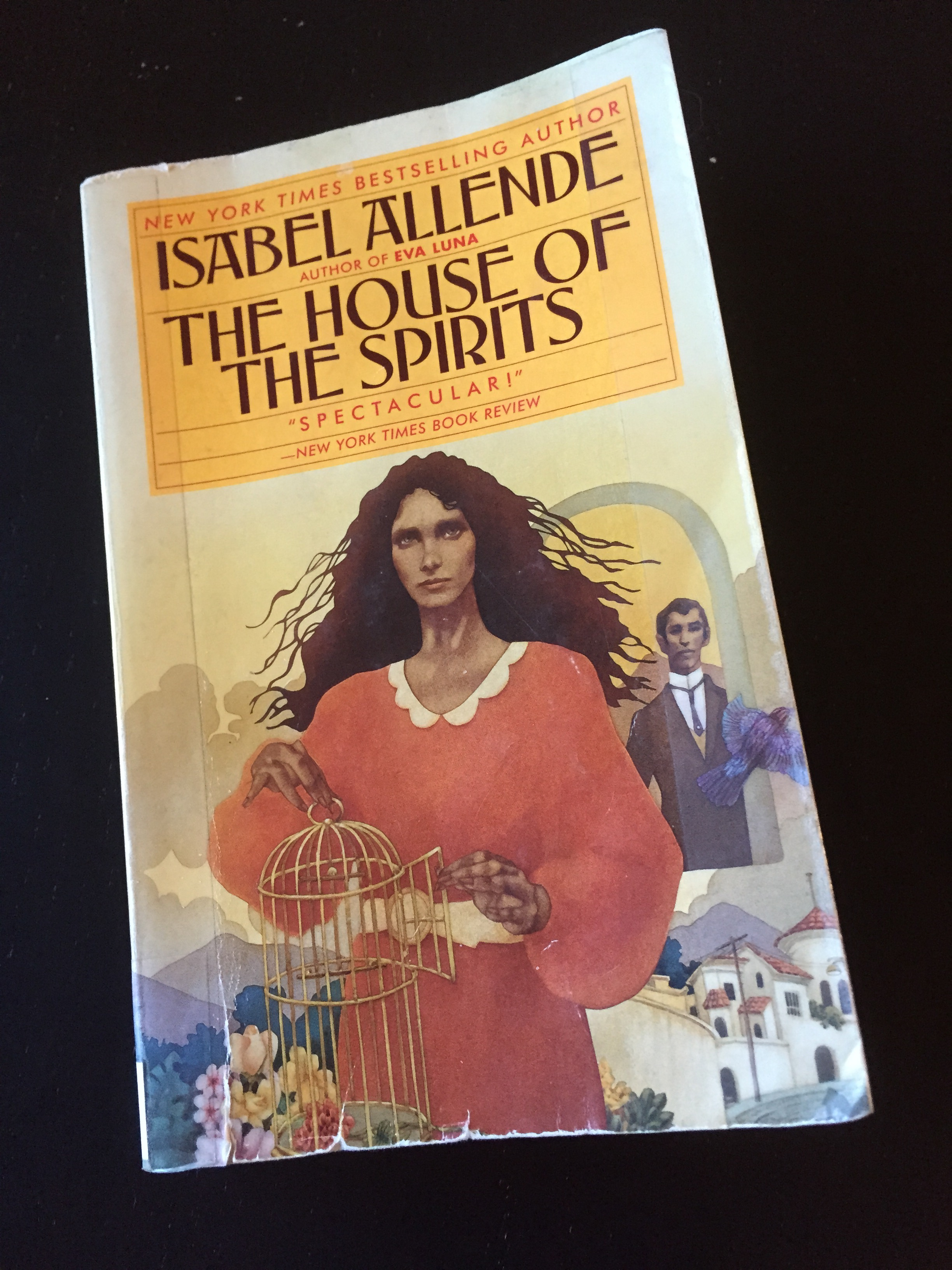 the complexities of human society as presented in the house of spirits by isabel allende essay Jane wong's poems can be found in best american poetry 2015, american poetry review, third coast, jubilat, and others a kundiman fellow, she is the recipient of a pushcart prize and fellowships from the us fulbright program, the fine arts work center, hedgebrook, and bread loaf.